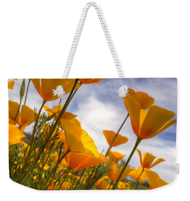 Poppies Weekender Tote Bag featuring the photograph Paint The Desert With Poppies by Saija Lehtonen
