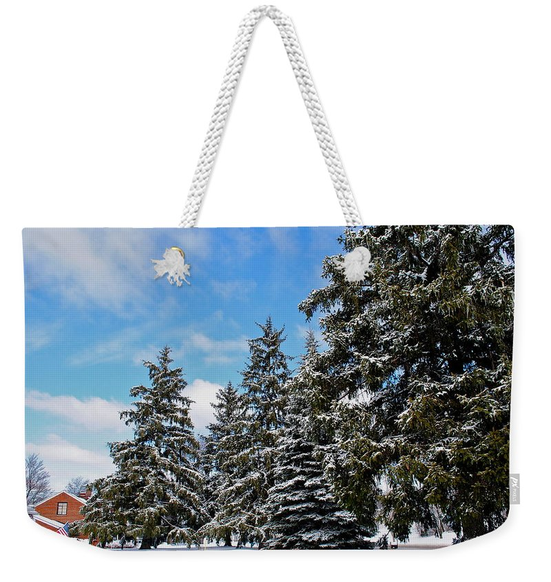 Painted Weekender Tote Bag featuring the photograph Painted Pines by Frozen in Time Fine Art Photography