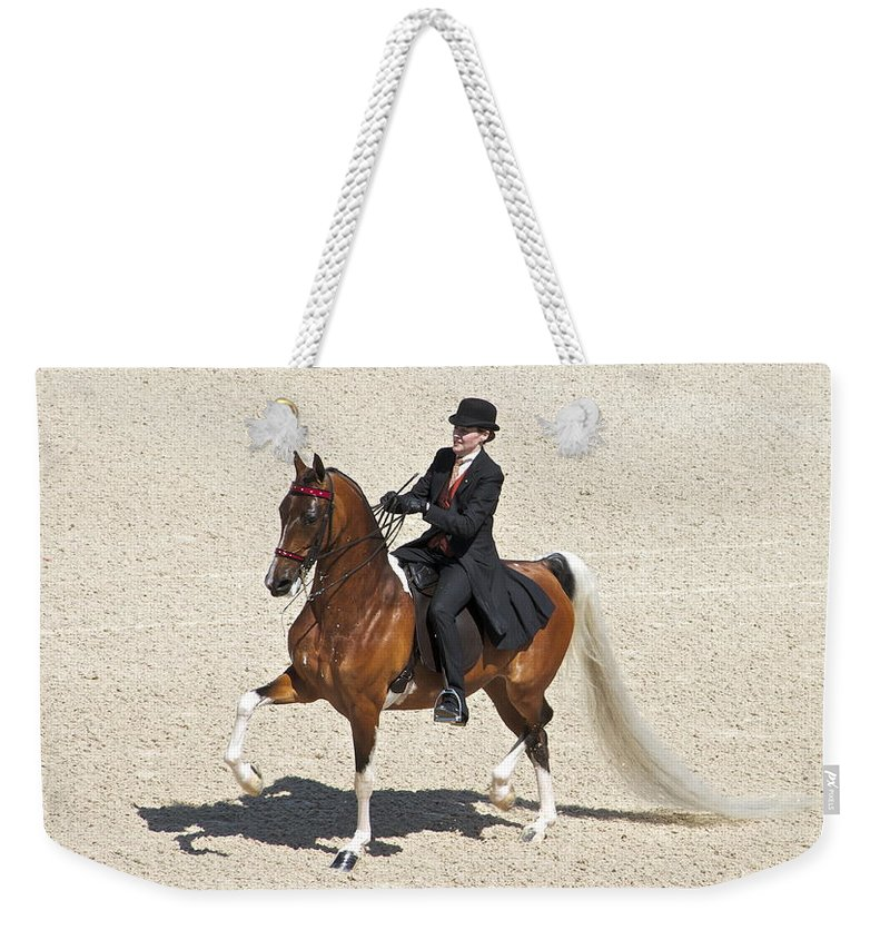 Saddlebred Weekender Tote Bag featuring the photograph Painted Saddlebred by Alice Gipson