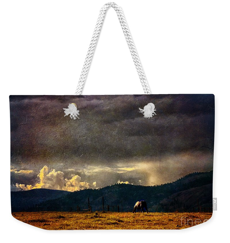Equine Fine Art Weekender Tote Bag featuring the photograph Painted Sky by Annette Coady