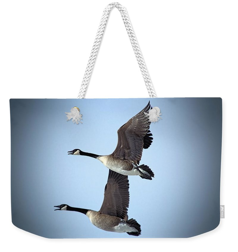 Nature Weekender Tote Bag featuring the photograph Pair In Flight by Bonfire Photography
