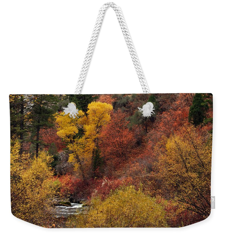 Idaho Weekender Tote Bag featuring the photograph Palisades Creek Canyon by Leland D Howard