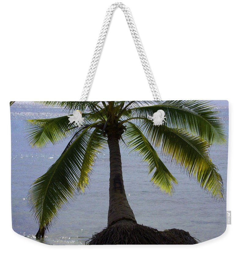 Palm Weekender Tote Bag featuring the photograph Palm At The Edge Of The Sea Number Two by Heather Kirk