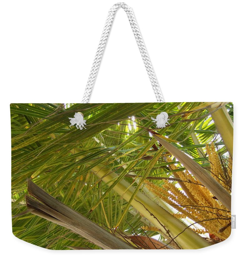 Weekender Tote Bag featuring the photograph Palm Blossoms by Katerina Naumenko