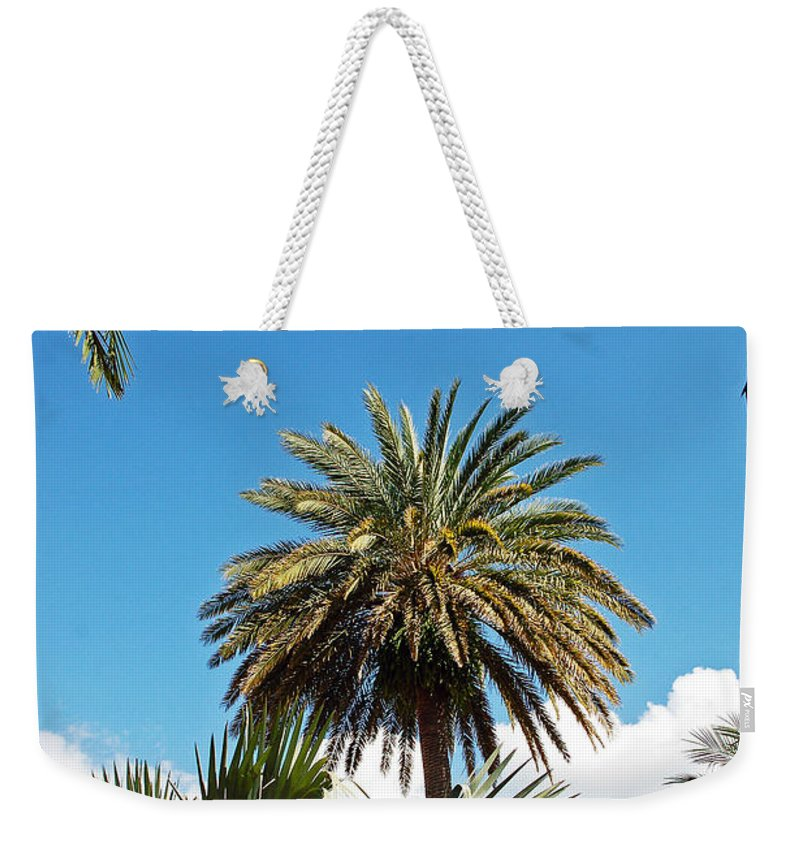 Palm Weekender Tote Bag featuring the photograph Palm City by Aimee L Maher ALM GALLERY