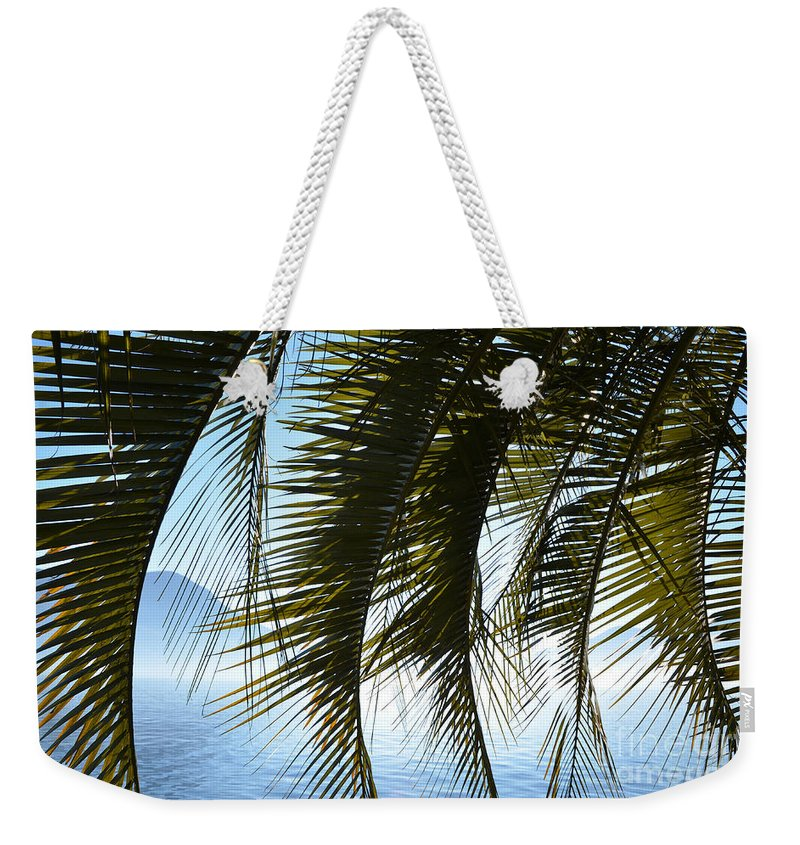 Palm Weekender Tote Bag featuring the photograph Palm Leaves by Mats Silvan