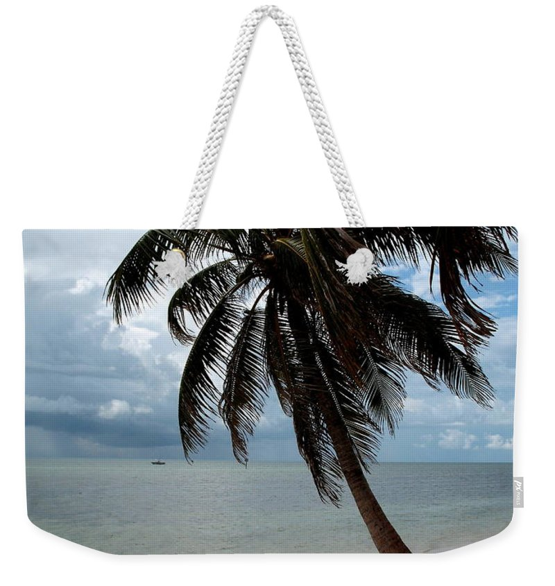 Beach Weekender Tote Bag featuring the photograph Palm On The Beach by Christiane Schulze Art And Photography