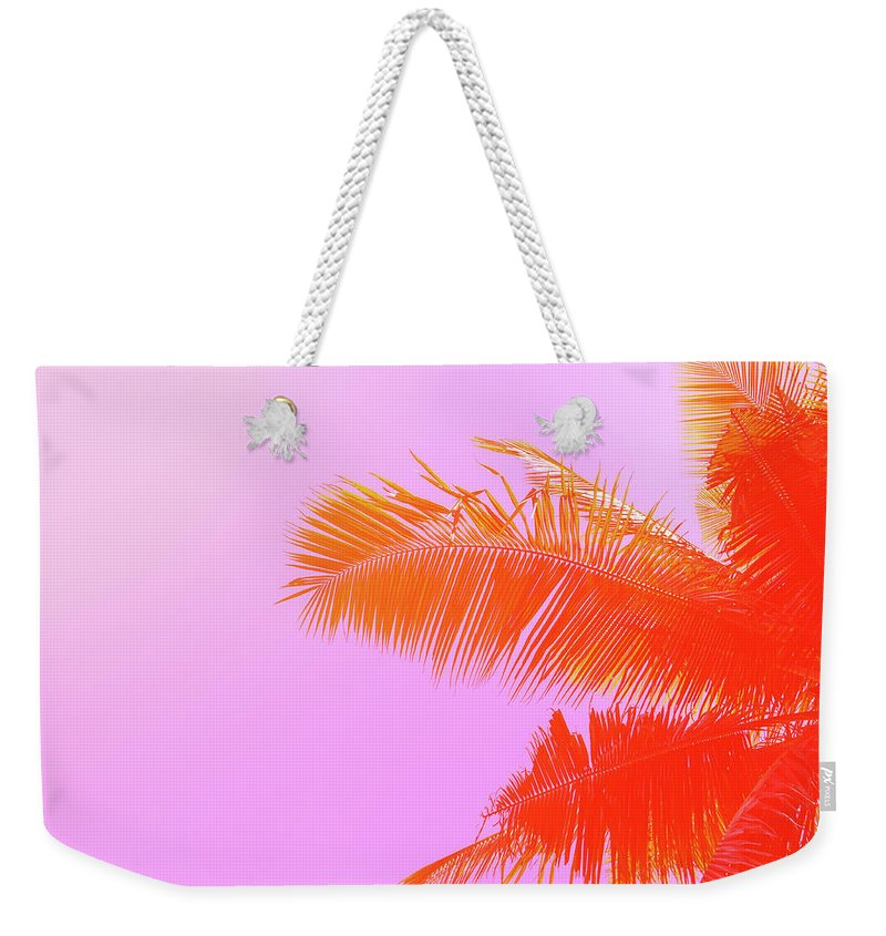 Orange Color Weekender Tote Bag featuring the photograph Palm Tree On Sky Background. Palm Leaf by Slavadubrovin