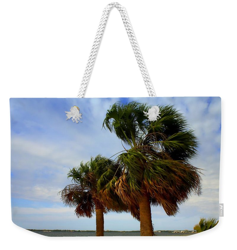Palm Trees Weekender Tote Bag featuring the photograph Palm Trees In The Wind by Debra Forand