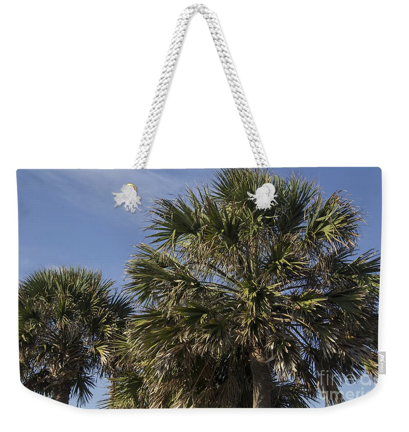 Palmetto Weekender Tote Bag featuring the photograph Palmetto by Teresa Mucha