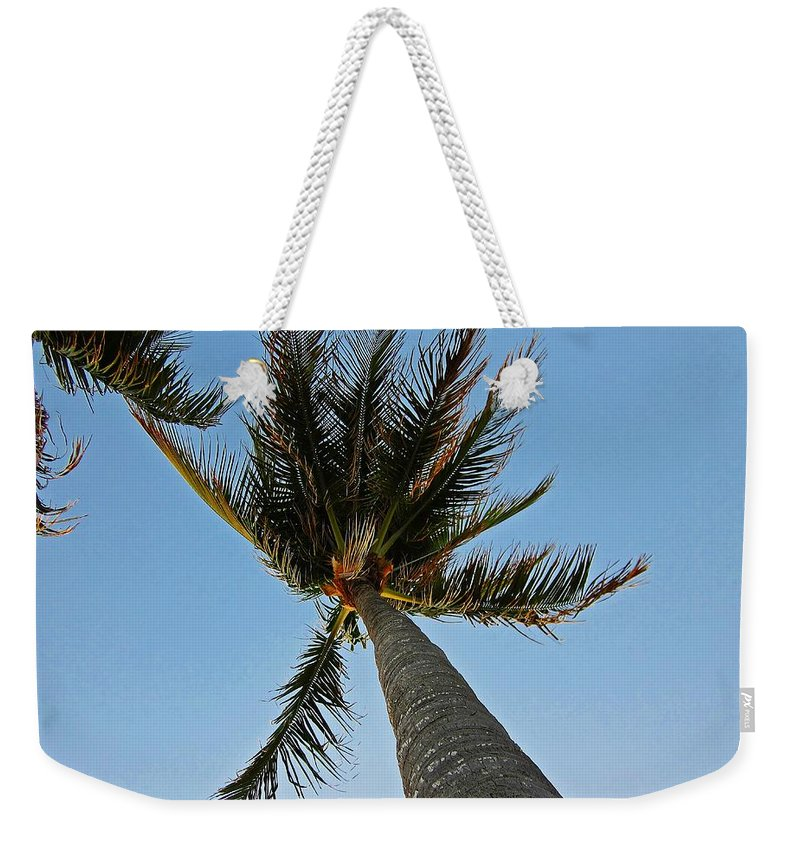 Palm Trees Weekender Tote Bag featuring the photograph Palms Over My Head by MTBobbins Photography