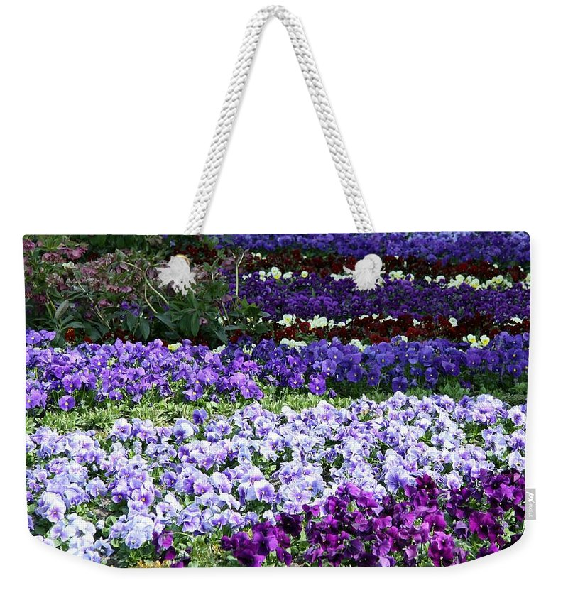 Pansy Weekender Tote Bag featuring the photograph Pansy Field by Christiane Schulze Art And Photography