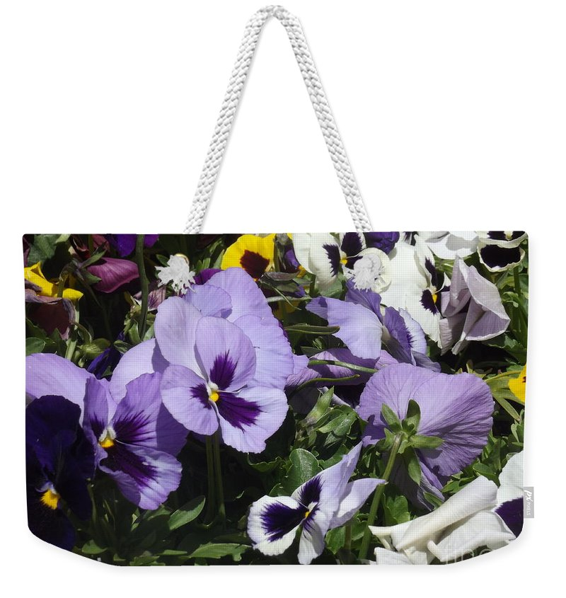 Pansy Weekender Tote Bag featuring the photograph Pansy by Jennifer Lavigne
