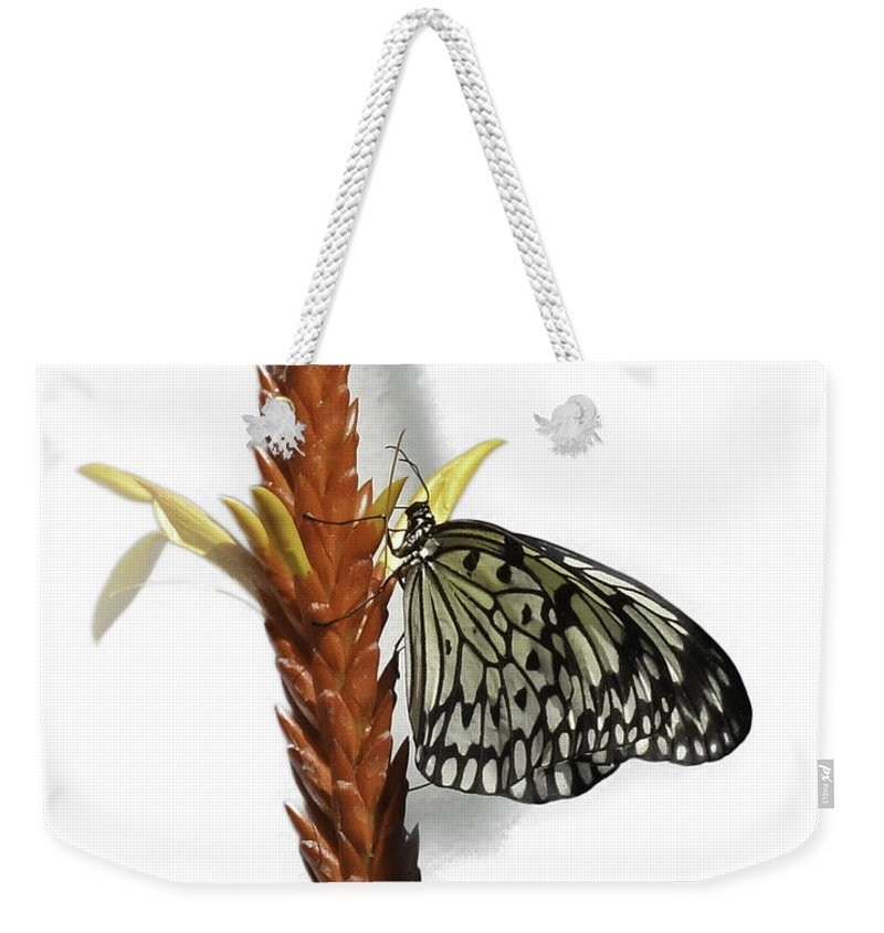 Paper Kite Weekender Tote Bag featuring the photograph Paper Kite by James Ekstrom
