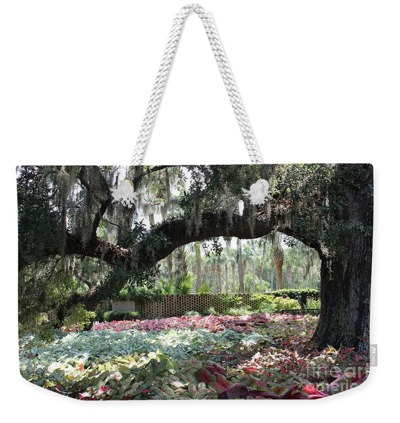 Landscape; Oaks Weekender Tote Bag featuring the photograph Paradise Perceived by IK Hadinger