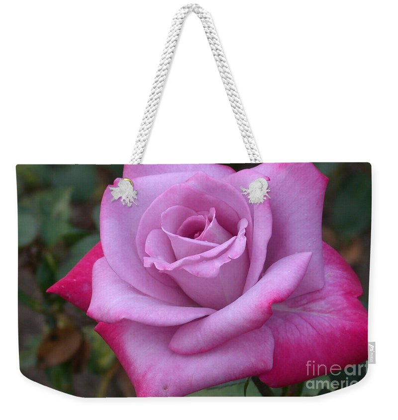 Paradise Rose Weekender Tote Bag featuring the photograph Paradise Rose by Living Color Photography Lorraine Lynch