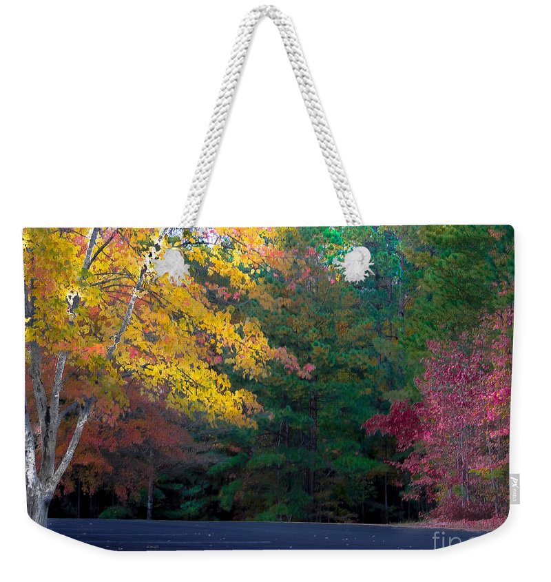 Park Weekender Tote Bag featuring the photograph Parking Respit by Scott Hervieux