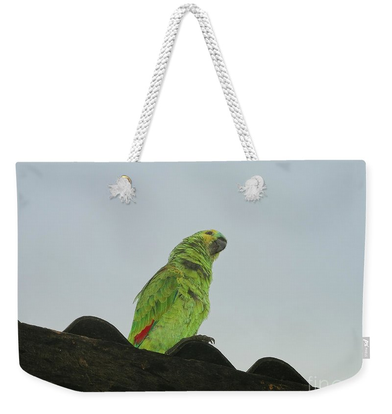 Animals Weekender Tote Bag featuring the digital art Parrot by Carol Ailles