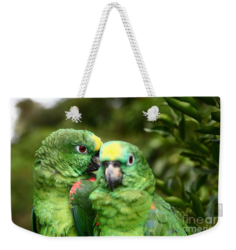 Parrot Weekender Tote Bag featuring the photograph Parrot Whispers by James Brunker