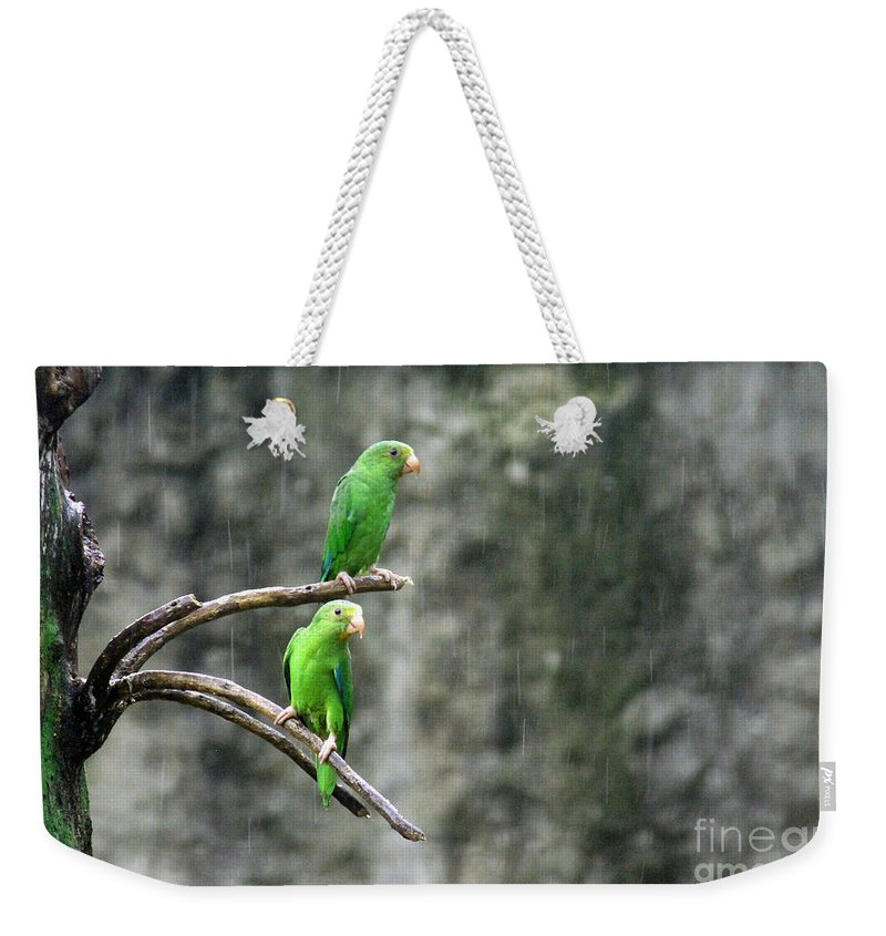 Panama Weekender Tote Bag featuring the photograph Parrots In The Rain by Bob Hislop