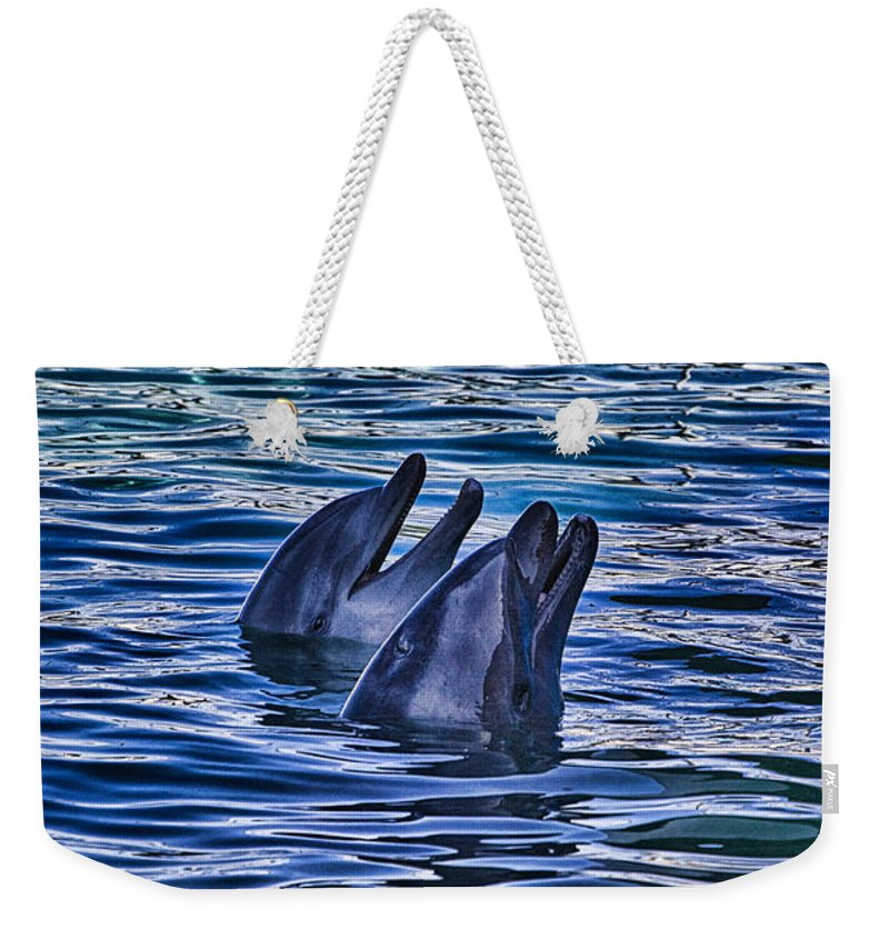 Partners Weekender Tote Bag featuring the photograph Partners In Blue by Douglas Barnard