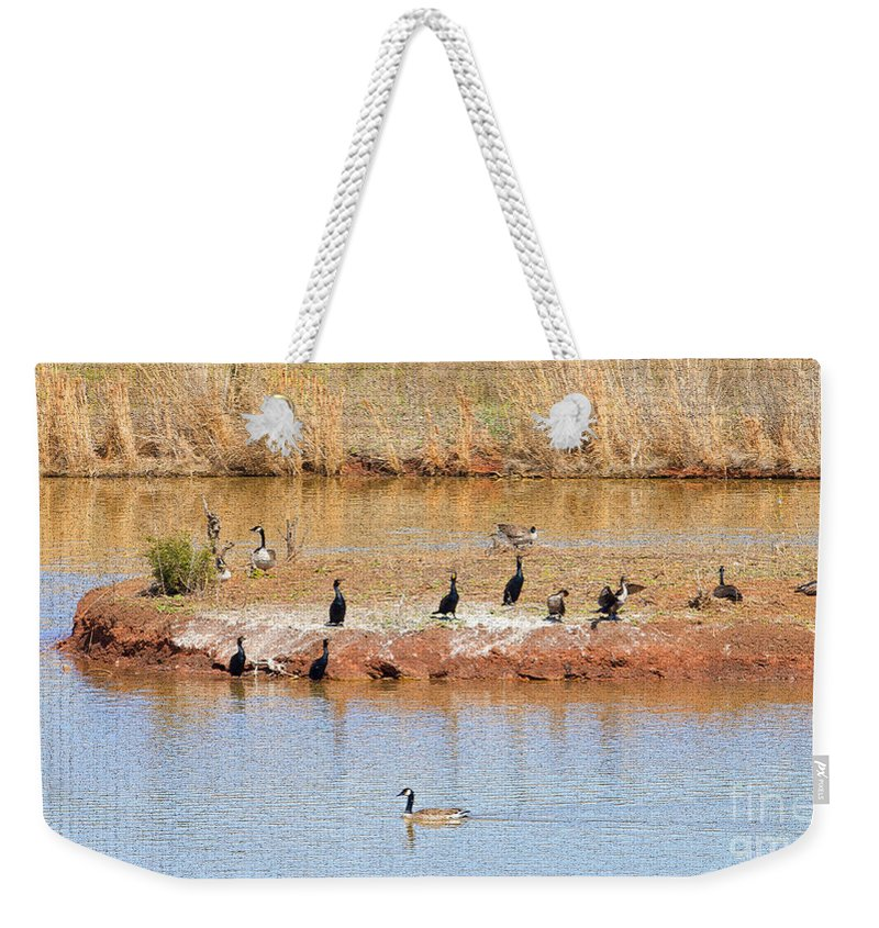 Birds Weekender Tote Bag featuring the photograph Party Island by Betty LaRue