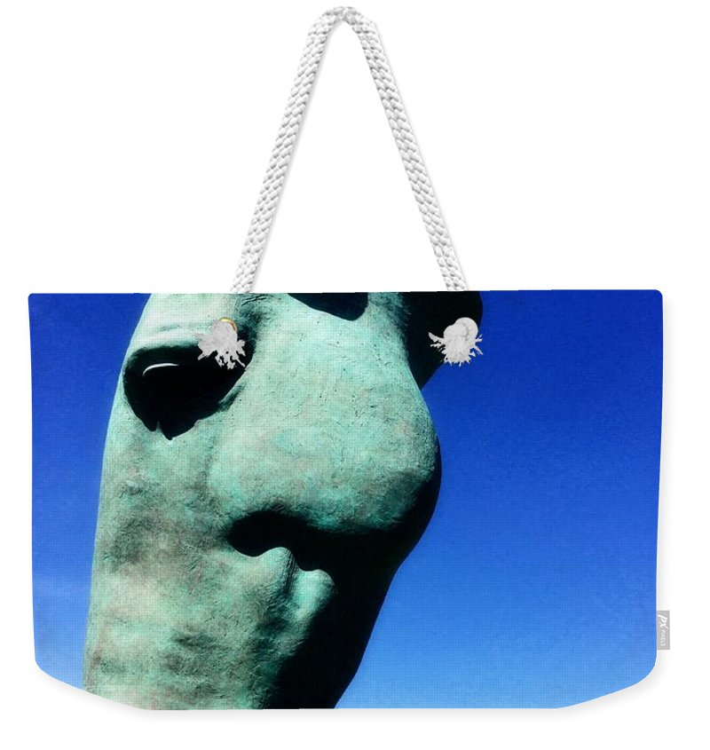 Parx Casino Weekender Tote Bag featuring the photograph Parx Horse by Alice Gipson