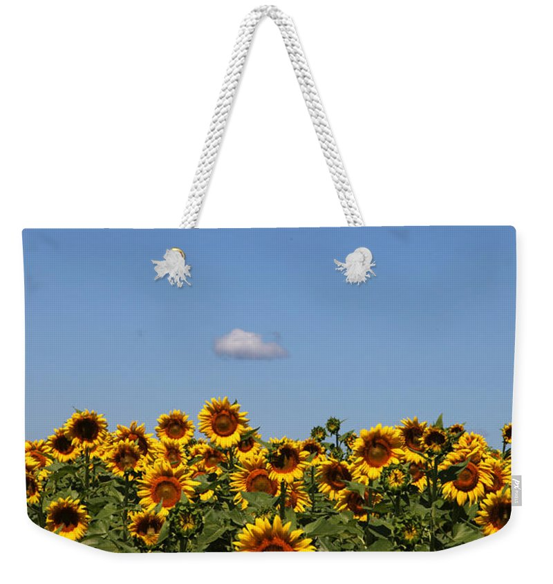 Sunflower Weekender Tote Bag featuring the photograph Passing by by Amanda Barcon
