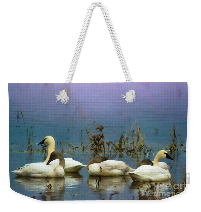 Lake Weekender Tote Bag featuring the photograph Pastel Morning by Scott Hervieux
