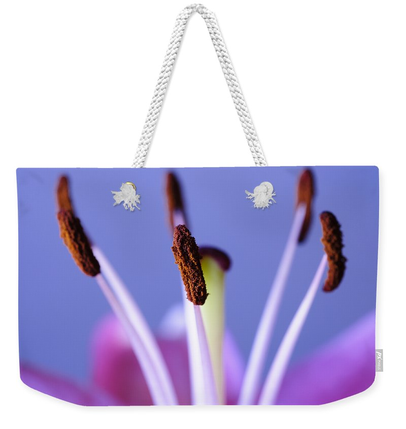 Background Weekender Tote Bag featuring the photograph Pastels And Chocolate by Christi Kraft