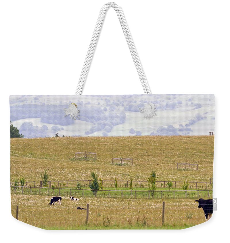 Grazing Weekender Tote Bag featuring the photograph Pastoral by Keith Armstrong