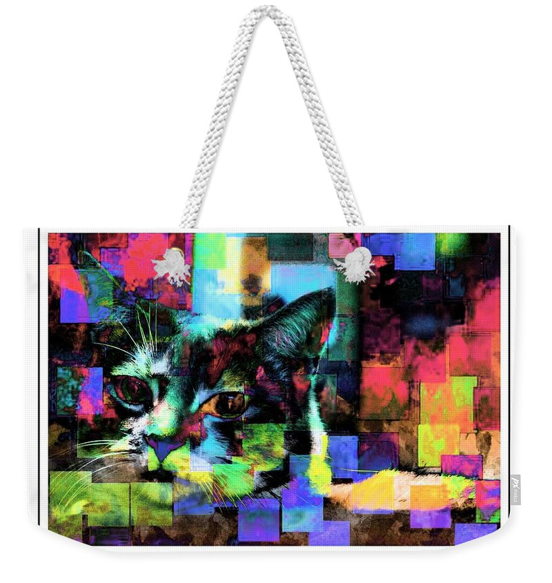 Cat Weekender Tote Bag featuring the photograph Patchwork Kitty by Alice Gipson