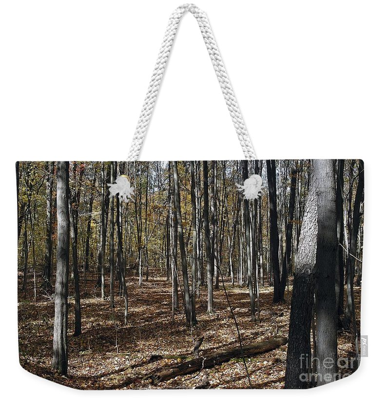 Forest Floor Weekender Tote Bag featuring the photograph Path by Joseph Yarbrough