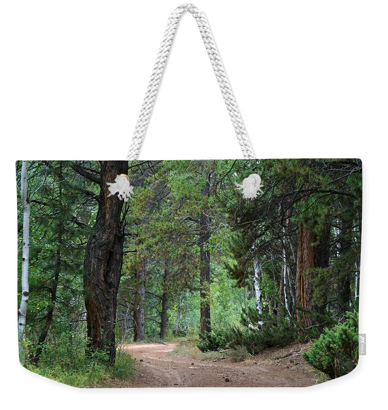 Path Through The Pines Weekender Tote Bag featuring the photograph Path Through The Pines - Casper Mountain - Casper Wyoming by Diane Mintle