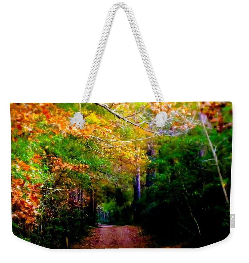 Paths Weekender Tote Bag featuring the photograph Paths We Choose by Karen Wiles