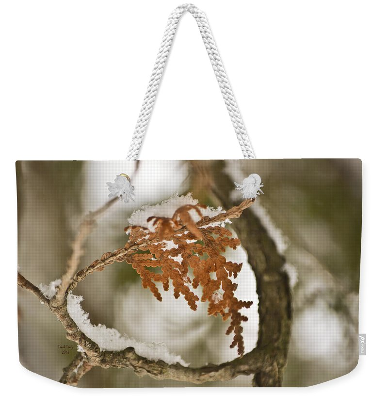 Flower Weekender Tote Bag featuring the photograph Patti Page by Trish Tritz