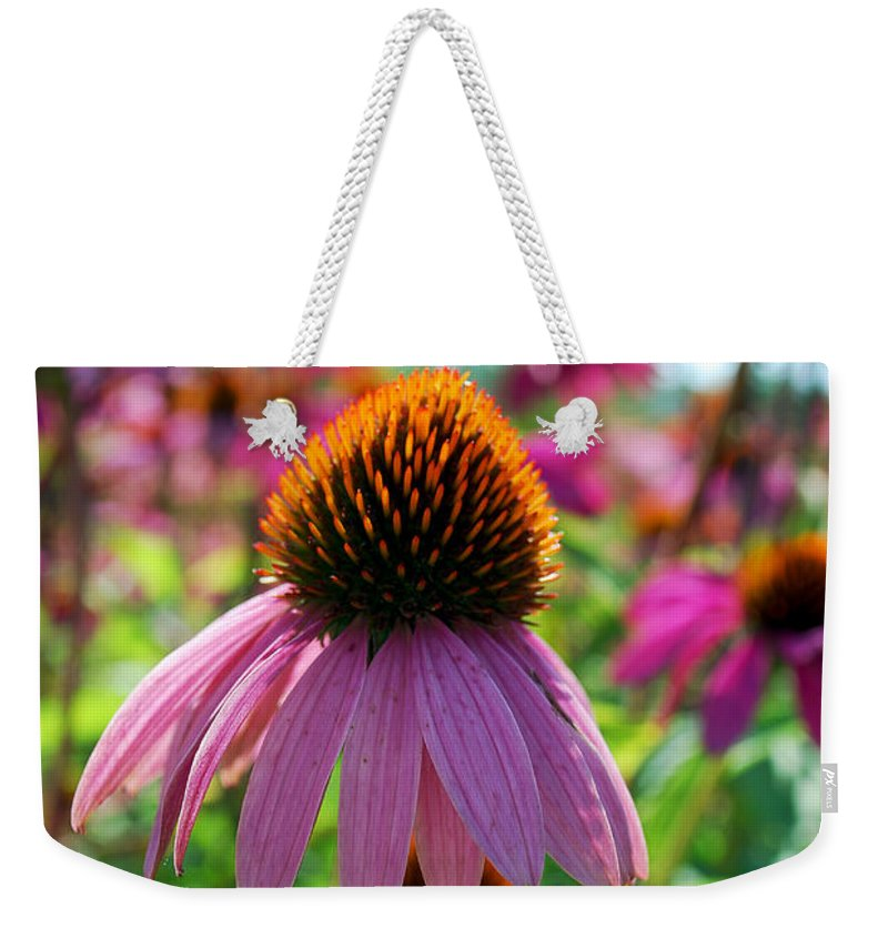 Becky Furgason Weekender Tote Bag featuring the photograph #paulzurawski by Becky Furgason