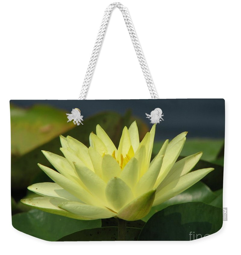 Lillies Weekender Tote Bag featuring the photograph Peace by Amanda Barcon
