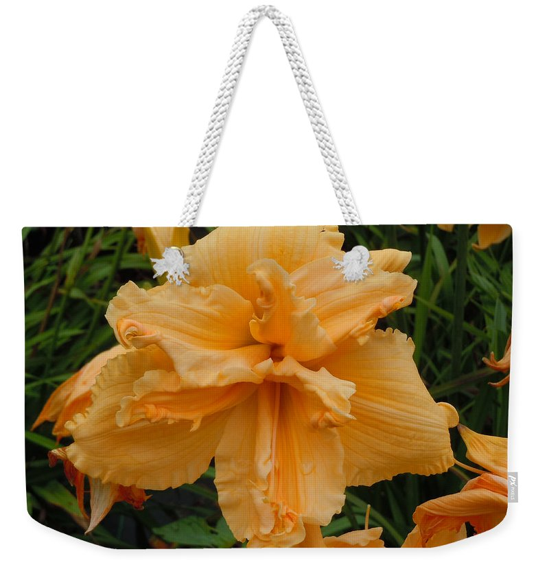 Daylily Weekender Tote Bag featuring the photograph Peachy Keen by Jean Blackmer