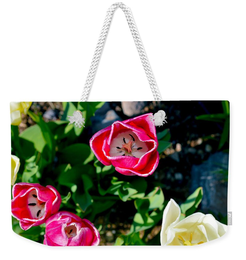Flower Weekender Tote Bag featuring the photograph Peak Inside Us by Brent Dolliver
