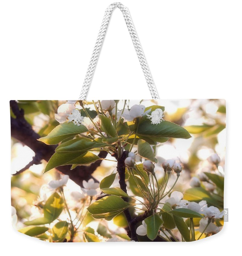 Pear Tree Weekender Tote Bag featuring the photograph Pear Blossoms by Angie Rea