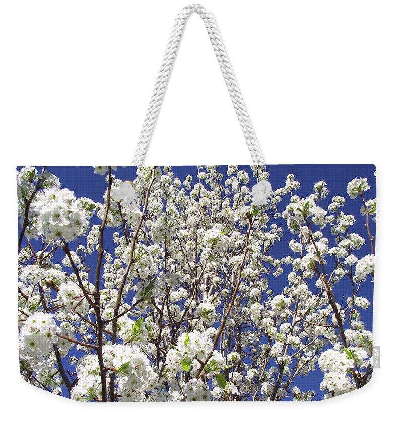 Plants Weekender Tote Bag featuring the photograph Pear Tree Blossoms In Spring by Duane McCullough