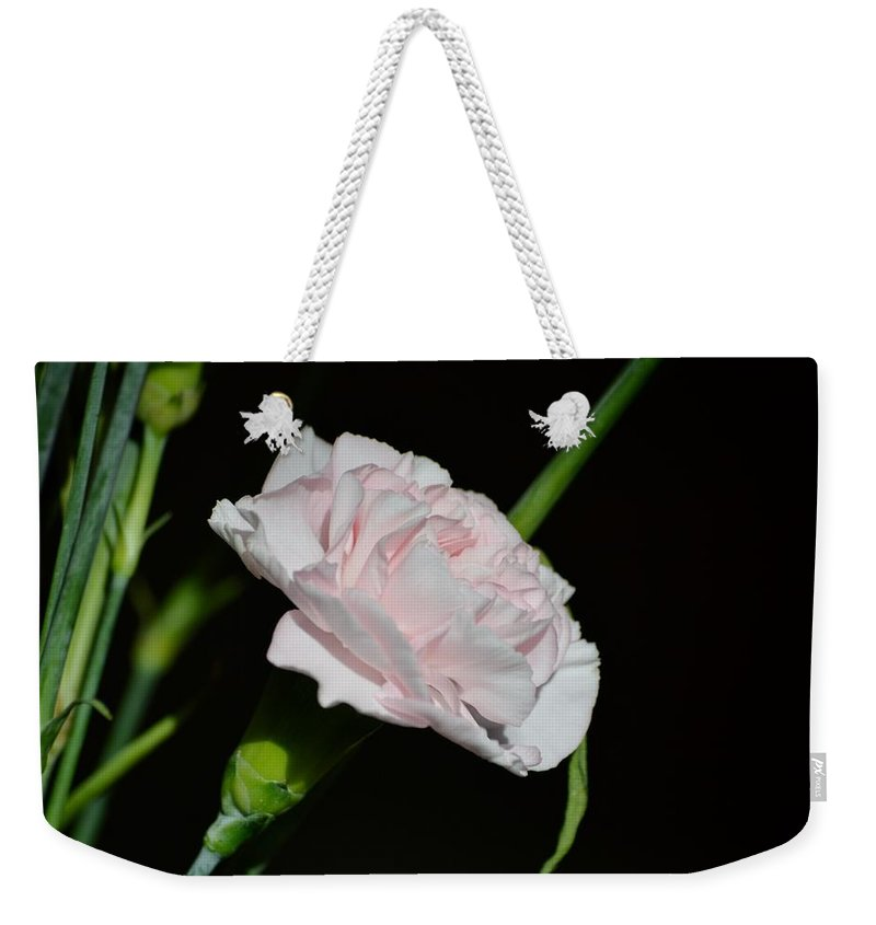 Pearl Spotlight Weekender Tote Bag featuring the photograph Pearl Spotlight by Sonali Gangane