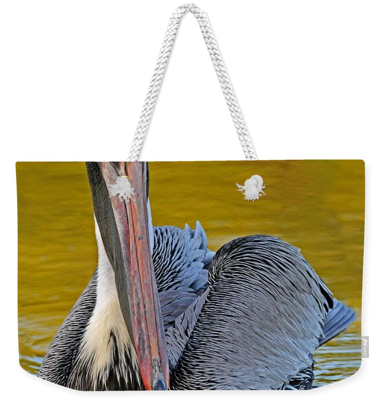 Pelican Weekender Tote Bag featuring the photograph Pelican by Dave Mills