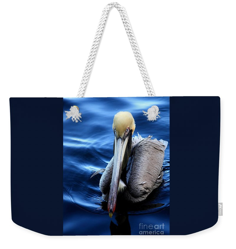 Pelican Weekender Tote Bag featuring the photograph Pelican In The Bay by Carol Groenen