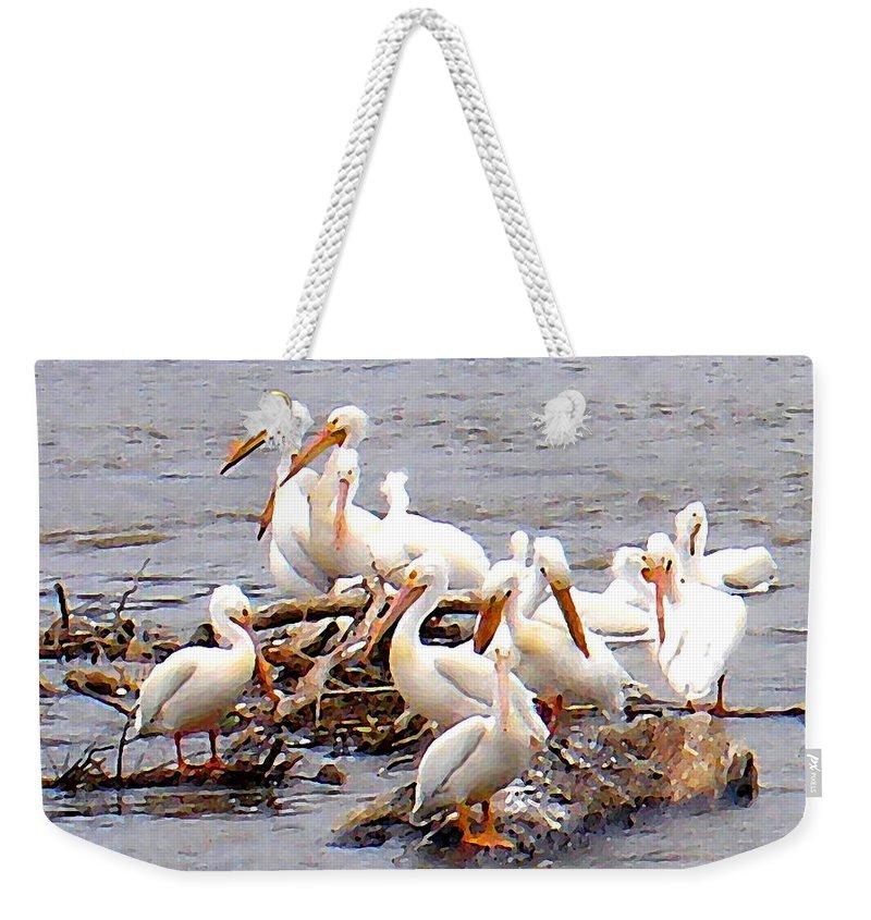 Pelicans Weekender Tote Bag featuring the photograph Pelican Island by Steve Karol