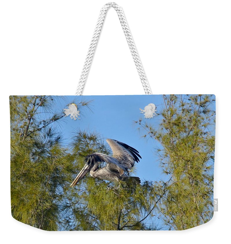 Pelican Weekender Tote Bag featuring the photograph Pelican Landing by Denise Mazzocco