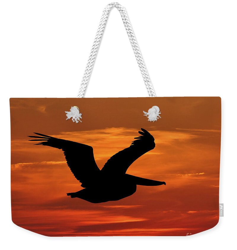 Pelican Silhouette Weekender Tote Bag featuring the photograph Pelican Profile by Al Powell Photography USA
