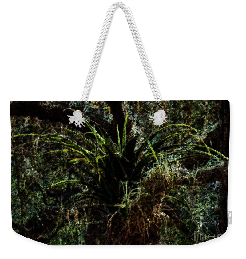 Air Plant Weekender Tote Bag featuring the photograph Penciled Air Plant by Nancy L Marshall