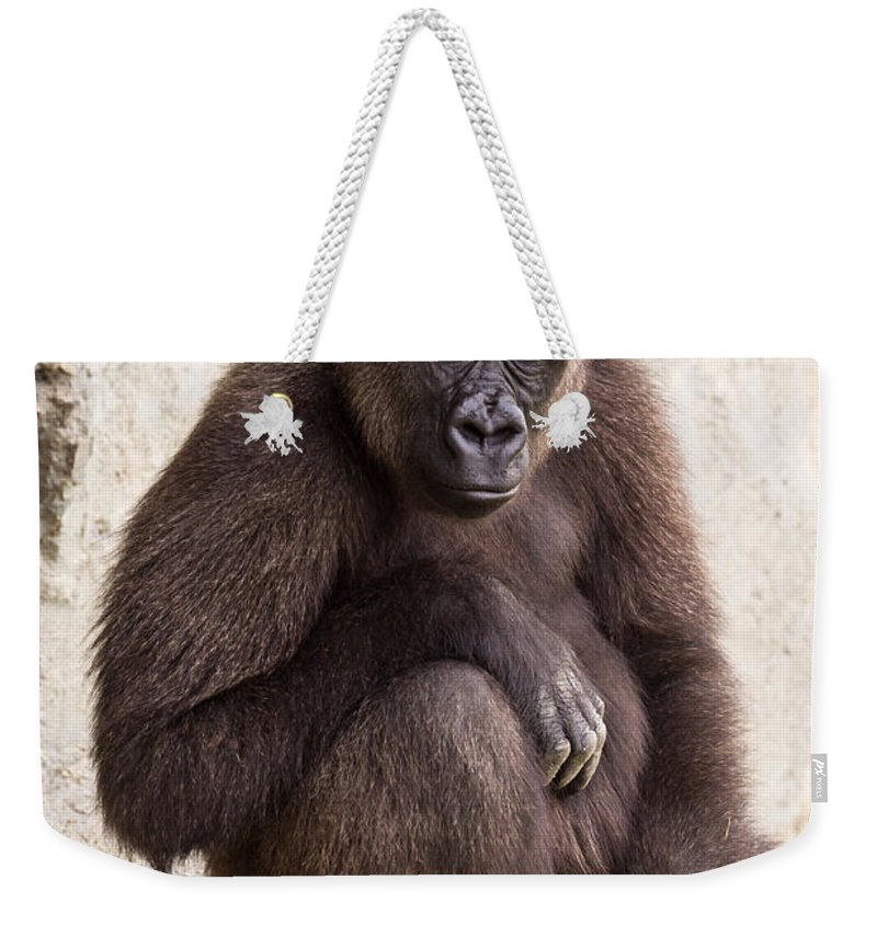Africa Weekender Tote Bag featuring the photograph Pensive Gorilla by Raul Rodriguez